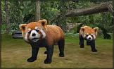 Zoo Mania 3D