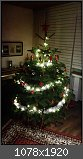 Zeigt her euern Weihnachtsbaum