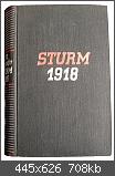 Sturm 1918 Sieben Tage deutsches Schicksal